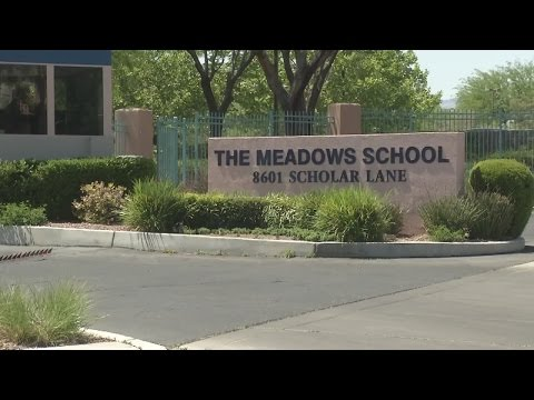 Meadows School receives national acclaim from Washington Post