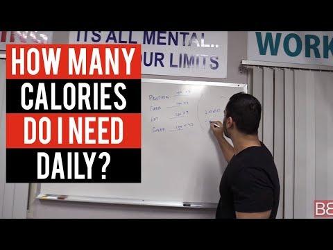 How many CALORIES DO I NEED DAILY? (Hindi / Punjabi)