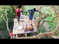 Cooking & Eating On 200 Years Old Oak Tree - Most Unusual Food Show Ever