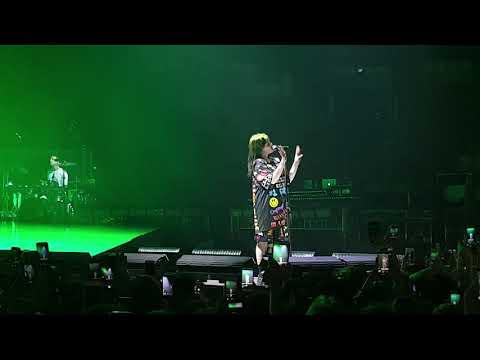 Billie Eilish - Wish You Were Gay (live, 60 FPS, Full HD, 27.08.2019, Moscow, Russia, Megasport / РФ
