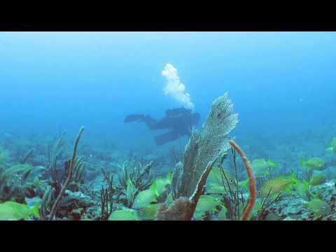 Pompano Offshore