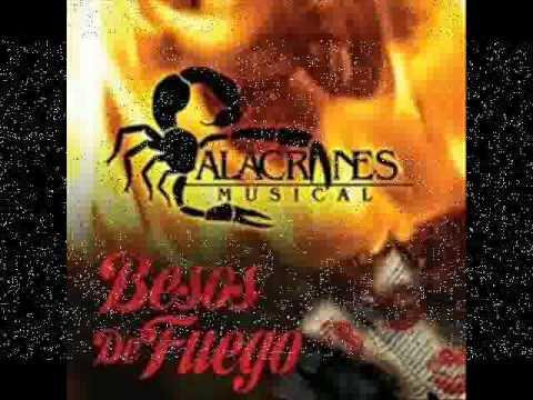 Besos De Fuego - Alacranes Musical