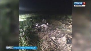Крушение Ми-2 на Ставрополье: шокирующие подробности, первые комментарии