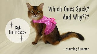 Cat Harnesses With Top Cat Model Summer  The Good, the Bad, and the Pretty