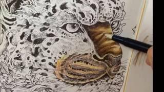 Colored by Julie Bouve - imagimorphia - derwent inktense - tombow blender