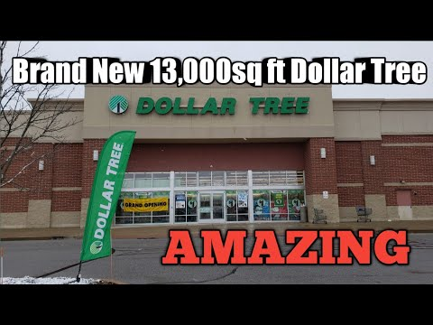 Come With Me to a Brand New 13,000sq ft Dollar Tree/WOW