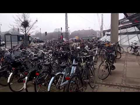 Bicycle parking [copenhagen]