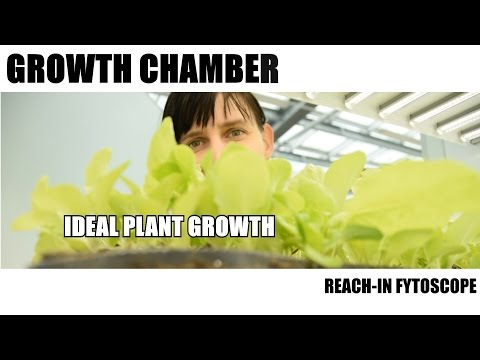Growth Chamber: Reach-In Fytoscope