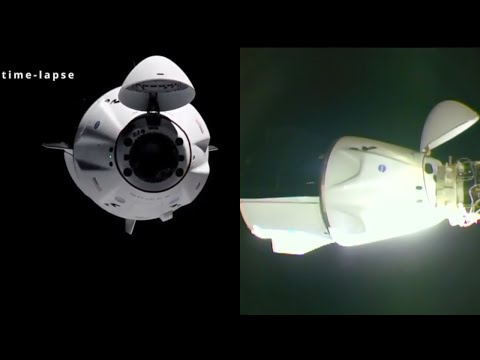 SpaceX Crew-2 docking