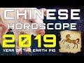 Horse 2019 Chinese Horoscope - Chinese Zodiac 2019