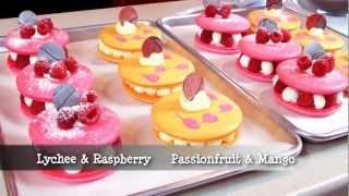 French Macarons (part Iii): Macaron Individual Desserts - Macaron Magic 2, Hosted By Jialin Tian