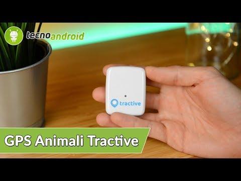 RECENSIONE TRACTIVE GPS per ANIMALI   CONTROLLIAMO il nostro AMICO a 4 ZAMPE!