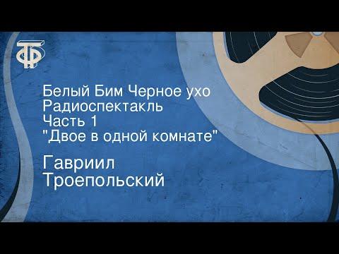 Гавриил Троепольский. Белый Бим Черное ухо. Радиоспектакль. Часть 1. \