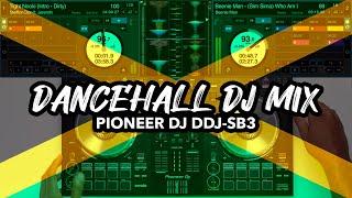 Dancehall Bashment Dj Mix Vybz Kartel, Stefflon Don, Mr Vegas, Beenie Man more.mp3