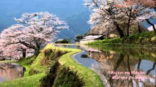Bóng mát che đầu - Dau Nguyen