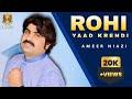 Ameer Niazi Song Koi Rohi Yaad Latest 2017