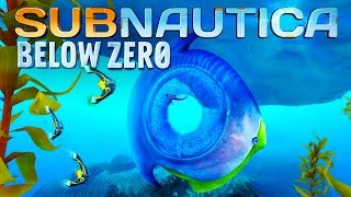 Subnautica Below Zero #02 | Riesiger Titan Hole Fish | Gameplay German Deutsch thumbnail