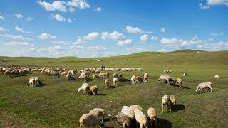 内蒙古 Inner Mongolia China