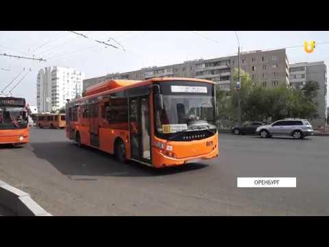 Садоводы Оренбурга продолжают жаловаться на дачные автобусы
