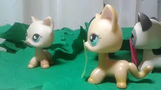 Коты - Воители 2 сезон 2 серия