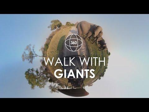 360° Elephant Sightings in Botswana | Rhino Africa