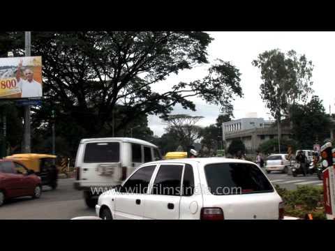 View of the traffic at Bengaluru - Karnataka