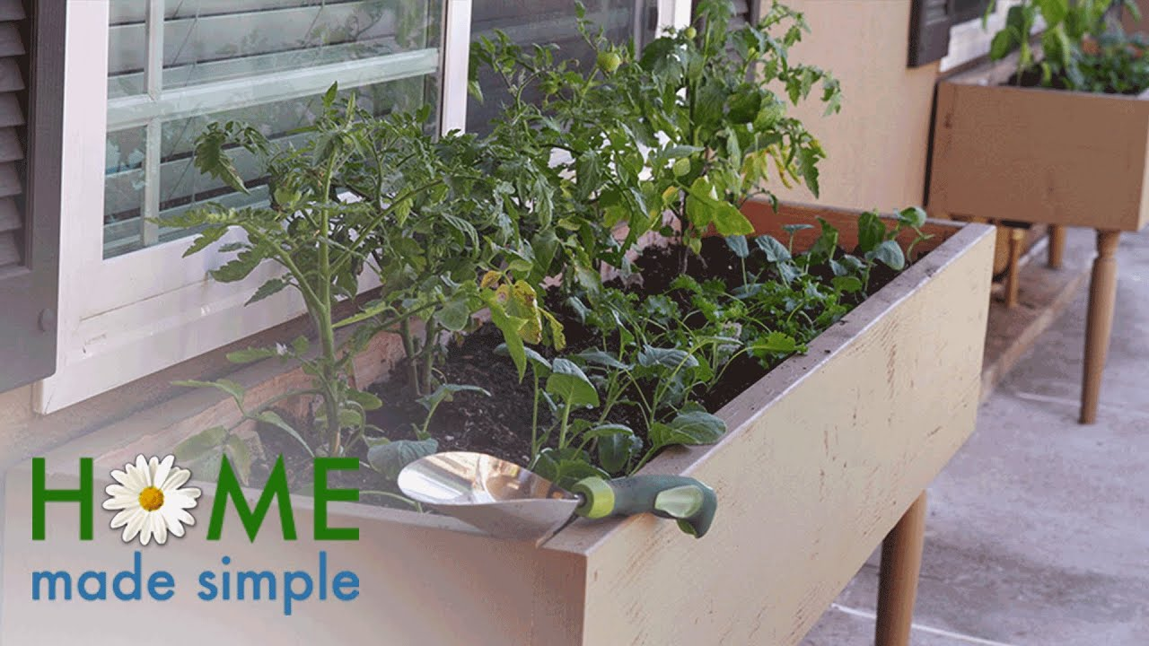 Build Your Own Vegetable Garden With No Yard Required | Home Made Simple |  Oprah Winfrey Network
