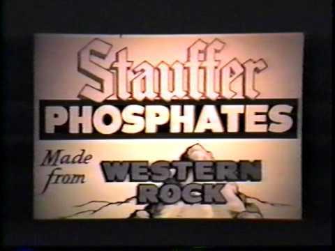 Stauffer Chemical History