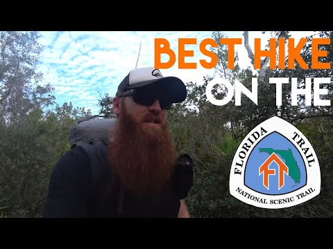 Best Hike On The Florida Trail - Ocala National Forest (4K)