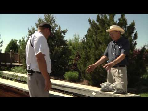 Huskie'z Landscaping, Inc on Real Estate Essentials exploring the Utah Botanical Center