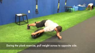 Plank + Weight Transfer