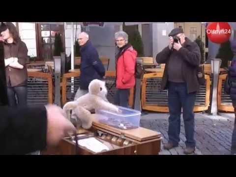 Olsztyn - Stare miasto from YouTube · Duration:  4 minutes 56 seconds