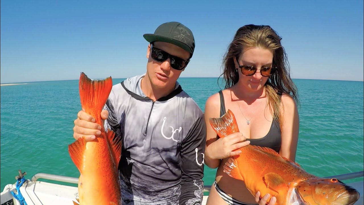 THE HUNT - EP 7 CORAL TROUT  (JIGGING + SPEARFISHING + CATCH AND COOK)