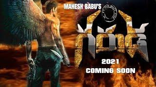 Mahesh Babu Confirms Historic Movie With Rajamouli | Mahesh Babu Upcoming Movie | #SSMB27 | PK TV