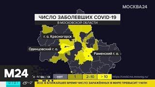 В Подмосковье зафиксировано 177 случаев заражения коронавирусом - Москва 24