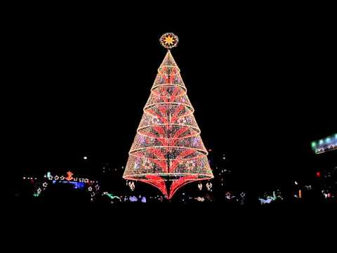 Tagum City Christmas Tree 2015