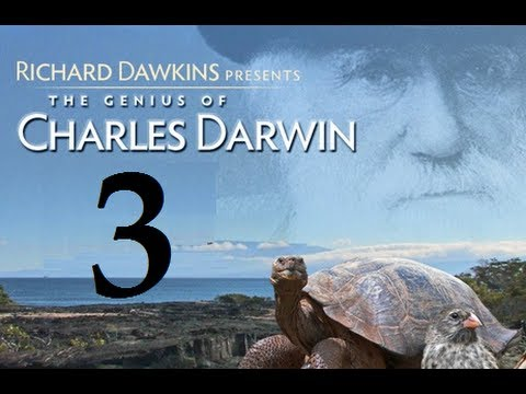 Richard Dawkins - The Genius of Charles Darwin - Part 3: God Strikes Back [+Subs]