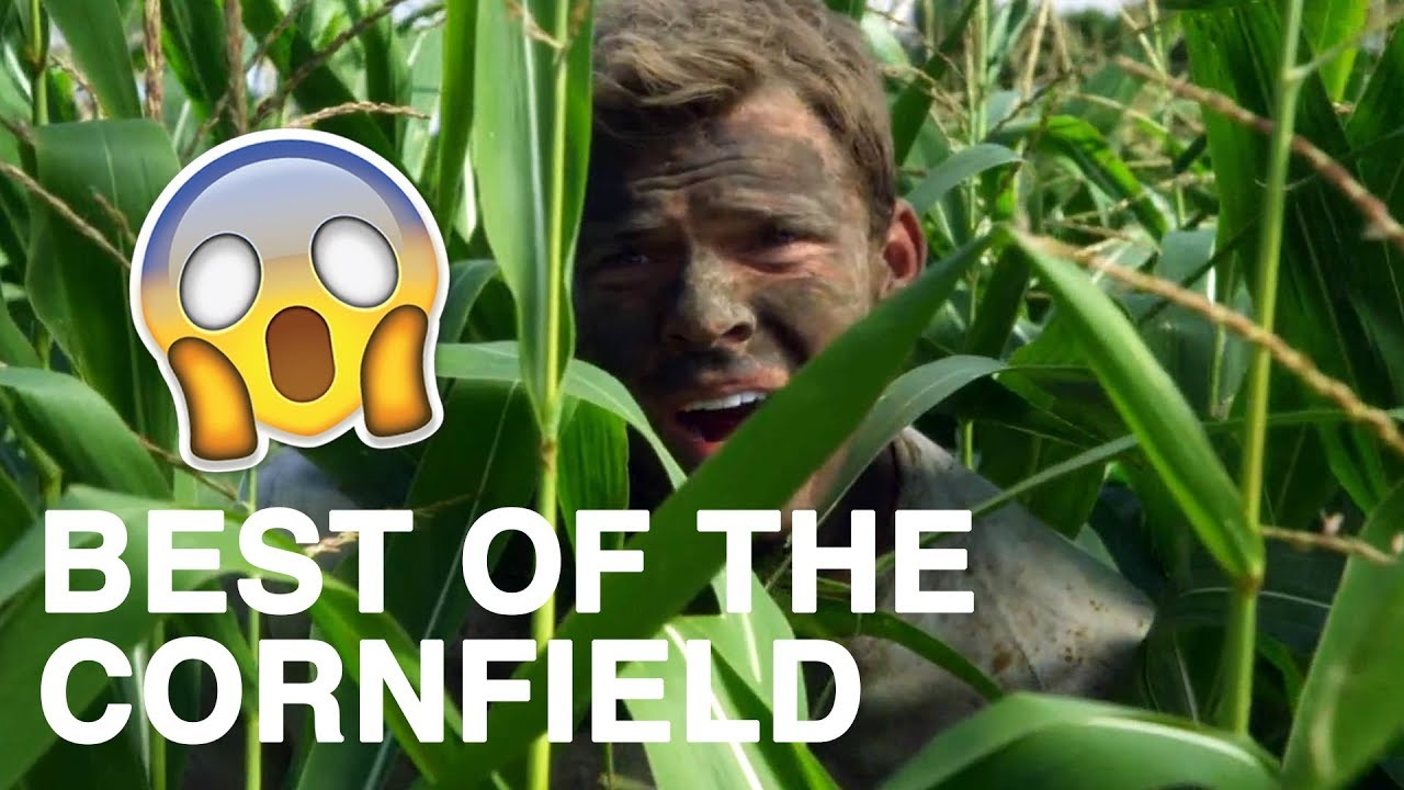 Download Blue Mountain State: The Best Cornfield Scenes