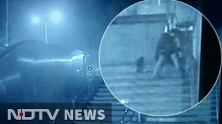caught on camera man stabs 3 dogs outside metro station in delhi