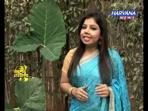 stv Haryana News, MAIN HARYANA, जानिए कब और कैसे बना हरियाणा ?