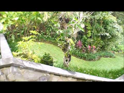 Ubud Hanging Gardens virtual tour