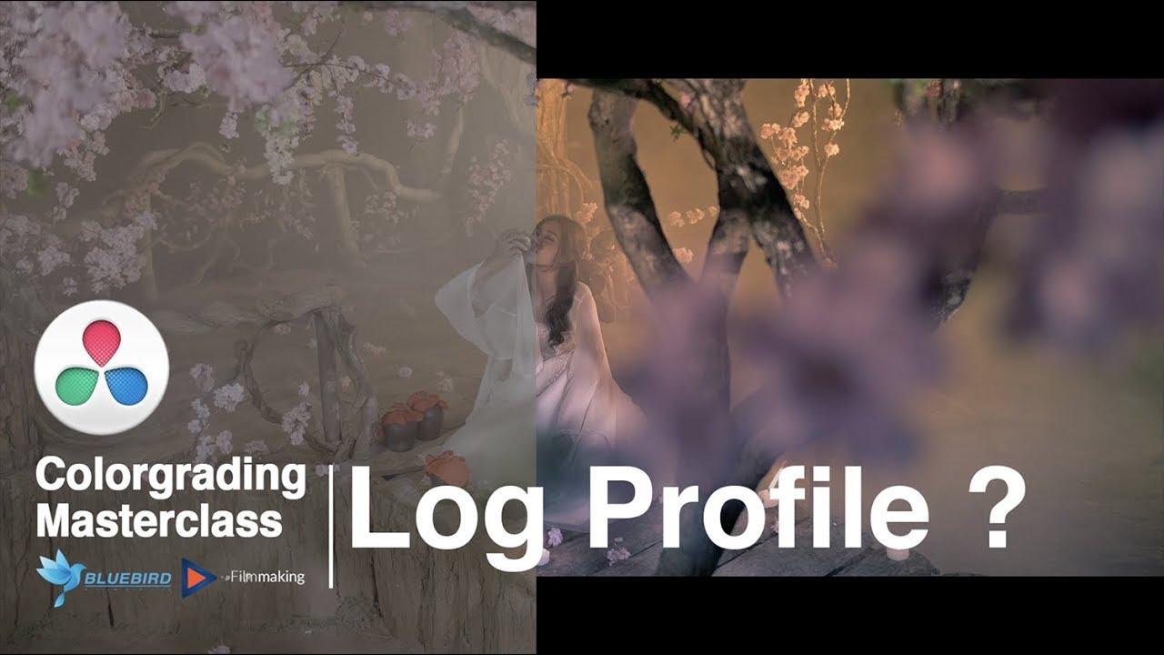 Giải thích về Log profile là gì ? Why you NEED to be adjusting your LOG PROFILES!