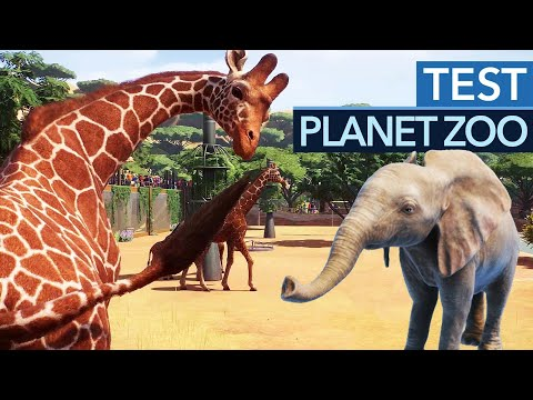 planet-zoo-im-test-/-review