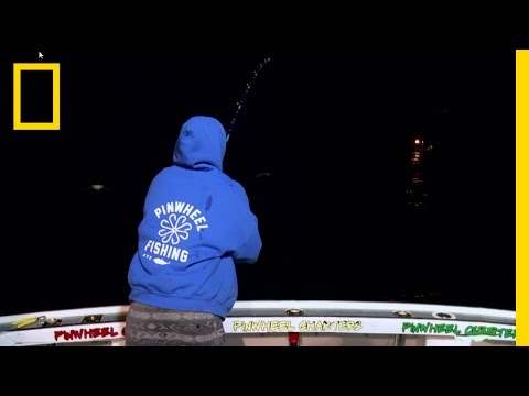 One Good Tuna Deserves Another | Wicked Tuna