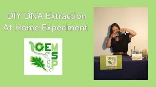 Homexperiment#1: DNA extraction (Instagram live)