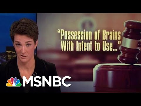 Investigators Checking If President Trump Lying Includes Financial Docs | Rachel Maddow | MSNBC