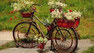33 quirky garden ideas for inspiration