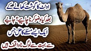 Aunth Ka Gosht Khany K Bad Wazo Karna Chahiye.