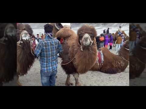 Kashmir - Leh - Ladakh Trip 2016 - Ghoome...