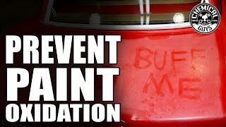 How To Prevent Paint Oxidation - Chemical Guys Car Care